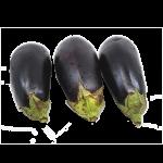 био-пресен-свеж-патладжан Biobazar